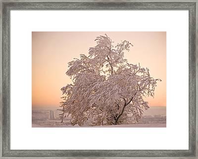 Winter Sunset Framed Print by Marilyn Hunt