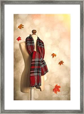 Winter Tartan Scarf Framed Print by Amanda Elwell