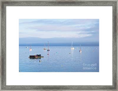 Winter Tranquility In Carrick Roads Framed Print by Terri Waters