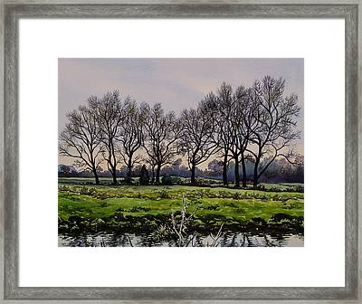 Winter Trees  Framed Print by Christopher Ryland