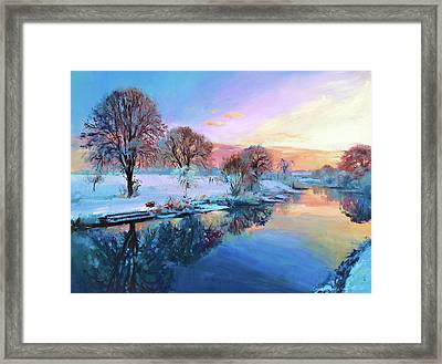 Winter Trees Framed Print by Conor McGuire