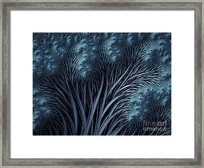 Winter Trees Framed Print by John Edwards