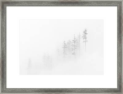 Winter Veil Framed Print by Mike  Dawson