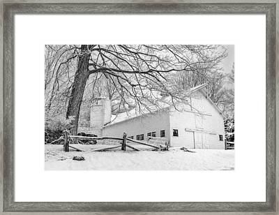 Winter White  Bw Framed Print by Bill Wakeley