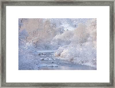 Winter Wonderland - Colorado Framed Print by Darren White