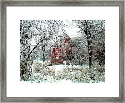 Winter Wonderland Framed Print by Julie Hamilton