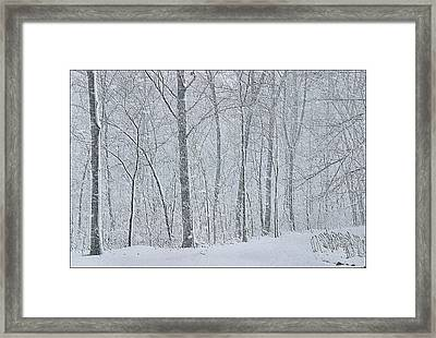 Winter Woodland Framed Print by Kristin Elmquist