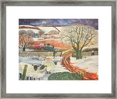 Winter Woolies Framed Print by Lisa Graa Jensen