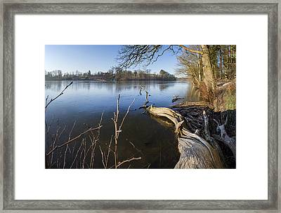 Winter's Charm Framed Print by Robert Lacy