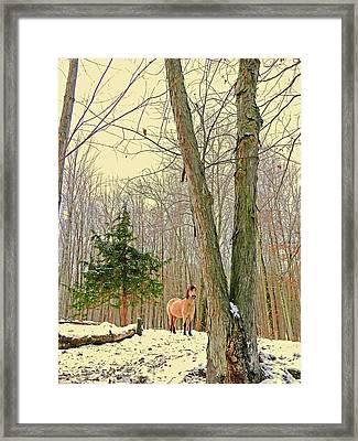 Wintertime Moment Framed Print by Patricia Keller