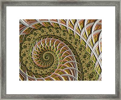 Wired Framed Print by Susan Maxwell Schmidt