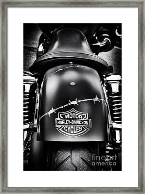 Wired Framed Print by Tim Gainey