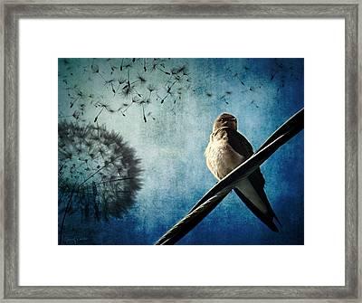 Wishing Swallow Framed Print by Nancy  Coelho