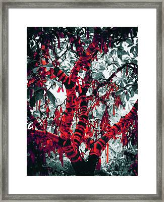 Wishing Tree Framed Print by Wim Lanclus