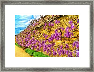 Wisteria Framed Print by Scott Carruthers