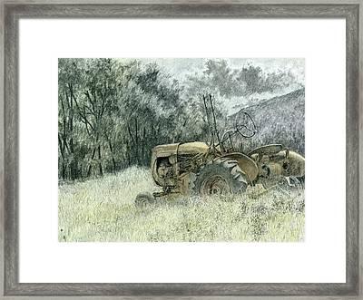 Wistful Framed Print by David King