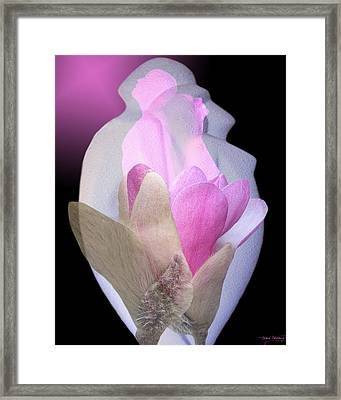 Within Love Framed Print by Torie Tiffany