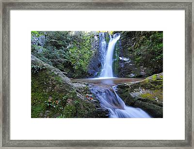 Wolf Creek Falls Framed Print by Alan Lenk
