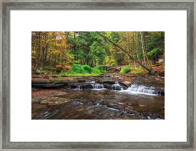 Wolf Creek Framed Print by Mark Papke