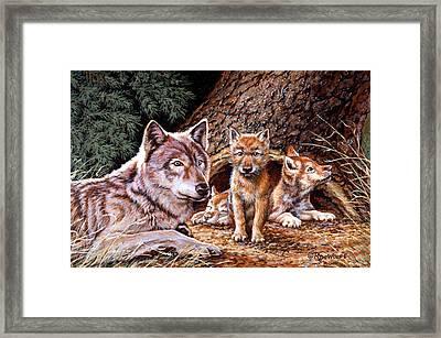 Wolf Den Framed Print by Richard De Wolfe