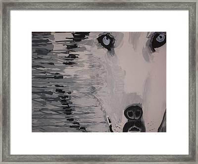 Wolf Mother Framed Print by Samuel Freedman