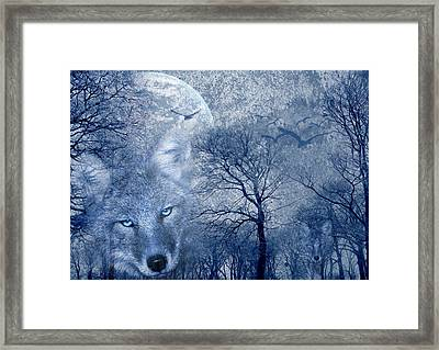 Wolf Framed Print by Svetlana Sewell