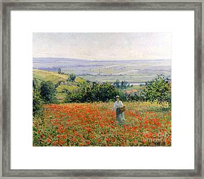 Woman In A Poppy Field Framed Print by Leon Giran Max