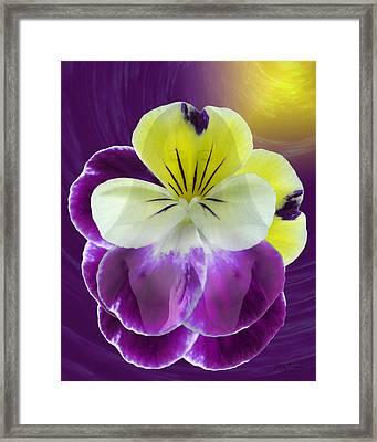 Wonder Framed Print by Torie Tiffany