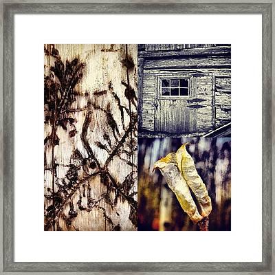 Wood Framed Print by Bob Berwyn