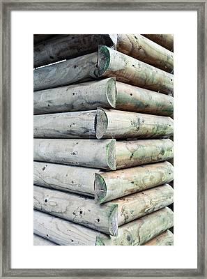 Wood Cabin Framed Print by Tom Gowanlock