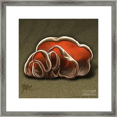 Wood Ear Mushrooms Framed Print by Marshall Robinson