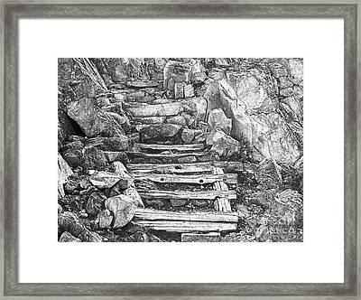 Wood Steps Through Rock Bw Framed Print by Marv Vandehey