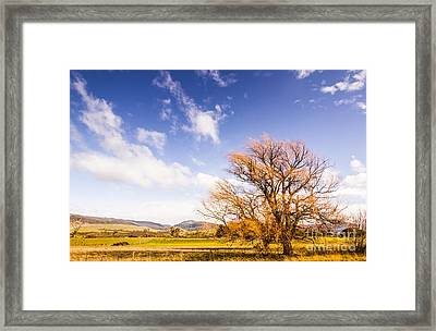 Woodbury In Fall Framed Print by Jorgo Photography - Wall Art Gallery