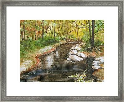 Wooded Creek Framed Print by Marsha Elliott