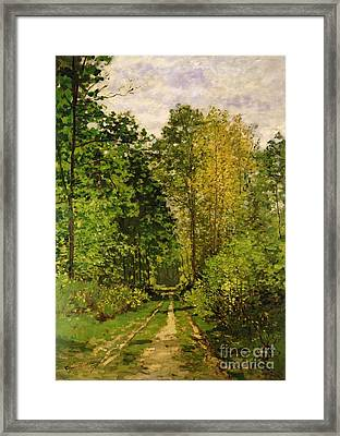 Wooded Path Framed Print by Claude Monet