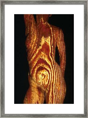Woodgrain Framed Print by Arla Patch