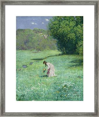 Woodland Meadow Framed Print by Hans Thoma