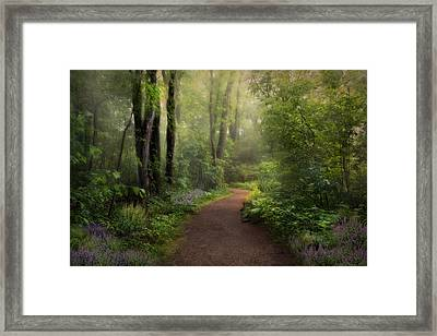 Woodland Spring Framed Print by Robin-lee Vieira