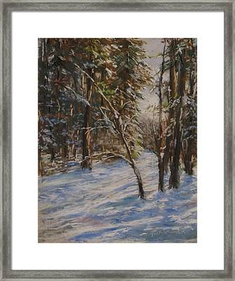 Woods And Snow At Two Below Framed Print by Jack Skinner