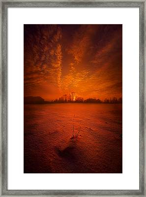 World Without End Framed Print by Phil Koch