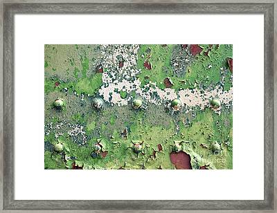 Worn And Weathered Framed Print by Tim Gainey
