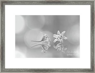 Would You Like To Dance? Framed Print by Masako Metz