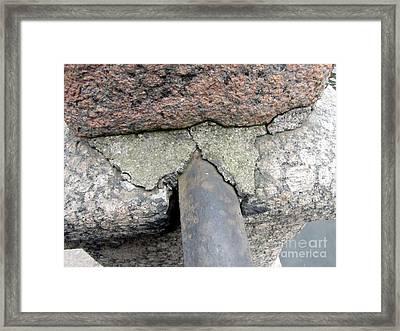 Wow  Framed Print by Yury Bashkin