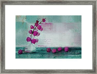 Wrapped Beauties - W90a Framed Print by Variance Collections