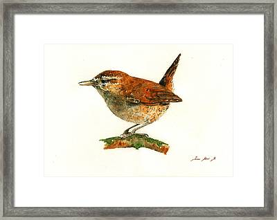 Wren Bird Art Painting Framed Print by Juan  Bosco