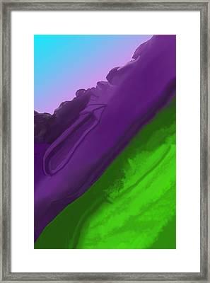 Wtf 1 Framed Print by David Lane