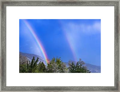 x2 Framed Print by Greg Collins