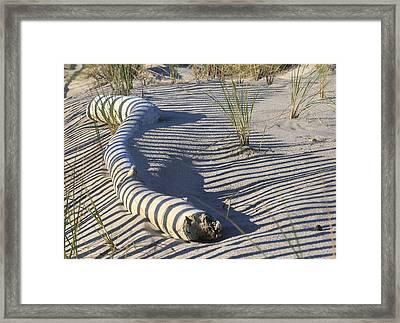 Yankee Beach Framed Print by Christopher Kirby