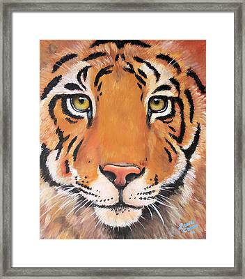 Year Of The Tiger Framed Print by Laura Carey