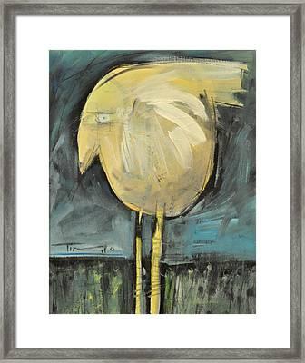 Yellow Bird In Field Framed Print by Tim Nyberg